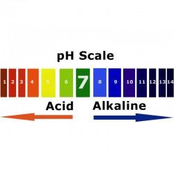 Alkaline Water