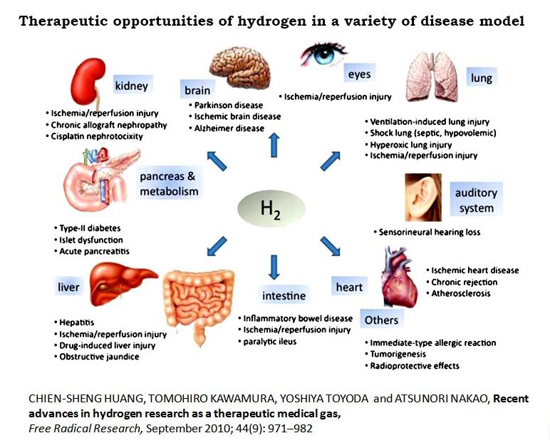 active-hydrogen_disease_model.jpg